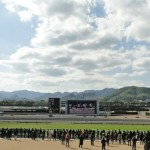 〔ジャパンカップ 2015〕外国馬分析