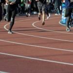 〔ステイヤーズS 2015〕マラソンレース展望