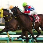 〔阪神カップ 2015〕最終予想軸馬の発表