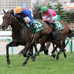 〔京都牝馬ステークス 2016〕データ分析・予想