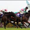 【高松宮記念 2016】データ分析・予想 100%来ない人気馬はこの馬!