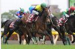 【フローラステークス 2016】血統予想最終見解、桜花賞組への挑戦権はどの馬に