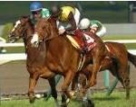 【阪神牝馬ステークス 2016】血統予想ヴィクトリアマイル前哨戦・・・ミッキークイーン始動戦