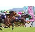 【優駿牝馬(オークス) 2016】18頭血統診断・血統から導かれる馬は?