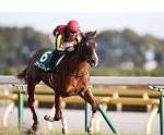 【NHKマイルカップ 2016】血統予想展望・メジャーエンブレムを負かすのはこの馬だ!!