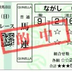 【宝塚記念 2016】血統予想回顧、夏は牝馬マリアライト牡馬撃破・・・的中報告