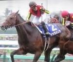 【宝塚記念 2016】血統予想・ドゥラメンテに迫るのはあの馬・・・1週前登録発表