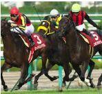 【神戸新聞杯 2016】血統予想・エアスピネル、いまいちキャラからの脱却へ