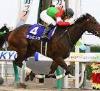 【チャンピオンズカップ 2016】出走予定馬と全頭血統診断