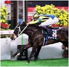 【香港国際競争 2016】血統予想・香港G1で荒稼ぎ!!出走馬確定馬と予想オッズ・・・展望