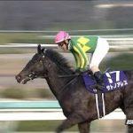 [日本ダービー2017]出走予定馬とCM、プレゼンター、国歌斉唱からサイン予想(5.25追加)!