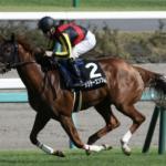 [桜花賞 2017]データ予想・出走予定馬と予想オッズ。ソウルスターリングは盤石じゃない!!