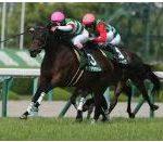 【マーメイドステークス 2017】血統予想・荒れる牝馬限定ハンデ戦・買い目発表!!・・・回顧と的中報告