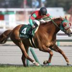 [函館記念 2017]データ予想!オッズには要注意!1番人気の馬は。。。