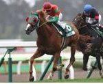【函館記念 2017】血統展望・出走予定馬/予想オッズ、高速洋芝対応できるのはこの馬!!