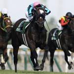 [関屋記念 2017]出走予定馬とデータ予想!美味しい馬発見!!!