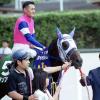 [小倉記念 2017]出走予定馬とデータ予想!有力候補の傾向はこれだ!必勝!!