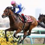 [京成杯オータムハンデ2017]出走予定馬、予想オッズとデータ予想!穴馬は意外と簡単に見つかるかも!