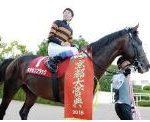 【京都大賞典 2017】血統予想・出走確定馬/予想オッズ、G1前哨戦この秋飛躍する馬は?