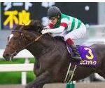 【菊花賞 2017】血統最終予想・台風接近大波乱も、重馬場巧者はこの馬!!・・・レース回顧