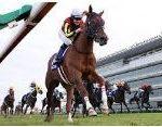 【阪神ジュベナイルフィリーズ2017】血統展望・出走予定馬/予想オッズ、世代最初のG1を制すのは??
