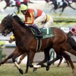 [シルクロードステークス 2018]出走予定馬、予想オッズとデータ予想!7割の確率で11番人気以下の馬が絡む荒れるレースとなりそうです!