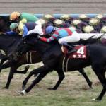 [京都記念2018]出走予定馬・予想オッズとデータ予想!レイデオロは最高3着!馬連で高配当狙います。