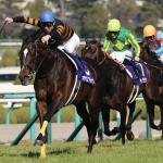 [大阪杯2018]当たるサイン馬券とデータ予想の融合!3連複5点で勝負!一番信頼できるのは4歳馬!