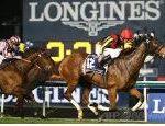 【ドバイシーマクラシック2018】血統最終予想・日本馬が勝つのはここしかない!!レイデオロ世界へ!!