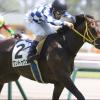 [阪神牝馬ステークス2018]出走予定馬、予想オッズとデータ予想!上がり馬のキレキレ末脚に期待!!