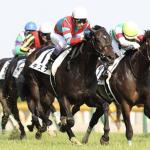 [日本ダービー2018]予想オッズ、出走予定馬とデータ予想!見れば納得、当たり馬券はもらった!これさえ買えば良いのです!