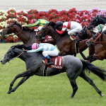[京都新聞杯2018]予想オッズ、出走予定馬とデータ予想!すんなり的中できそうな分かりやすいデータ傾向です!