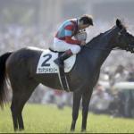 [日本ダービー2018]CMサイン馬券予想!出走予定馬多く今回もフルゲートで荒れることを期待!