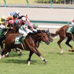 [中京記念2018]予想オッズ・出走予定馬とデータ予想!上位馬総崩れ。師匠の注目馬にも注目!