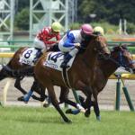 [新潟2歳ステークス 2018]予想オッズ・出走予定馬とデータ予想!人気馬決着でそんなに荒れなさそう!?