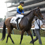 [札幌記念2018]データ予想!出走予定馬、予想オッズから買うのは8番人気まで!?
