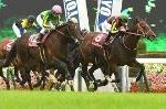 【毎日王冠 2018】血統予想・NHKマイルC馬対決、しかし軸馬はこの馬!!