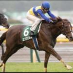 [富士ステークス2018]予想オッズ・出走予定馬とデータ予想!信頼性が低い1番人気。高配当となるか。