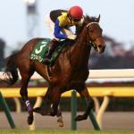 [東京スポーツ杯2歳ステークス2018]予想オッズ・出走予定馬とデータ予想!買い方を指南いたします。