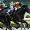 [中山金杯2019]データ予想!出走予定馬で2019年最初の重賞を勝つ馬をピックアップ!