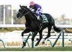 【京成杯 2019】血統展望・出走馬確定/予想オッズ、春クラシックで期待できる馬は??