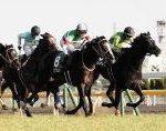 【東京新聞杯 2019】血統展望・出走予定馬/予想オッズ、藤澤厩舎なぜ3頭出し??