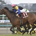 [弥生賞2019]データ予想!オッズと出走予定馬!1番人気の1着固定も面白い