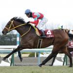 [京都記念2019]予想オッズ・出走予定馬とデータ予想!今週も的中させます!