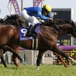 [高松宮記念2019予想]データ予想!オッズ、出走予定馬!人気サイドの決着になるか?
