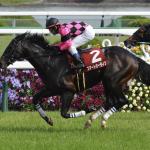 [京都新聞杯2019]予想オッズ、出走予定馬とデータ予想!皐月賞組に注目!