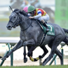 [福島牝馬ステークス2019]データ予想、出走予定馬、予想オッズ。穴馬もかなり絡むレースです。