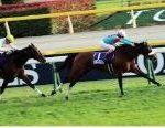 【安田記念 2019】血統予想展望・高速決着、2強に対抗できる馬は?