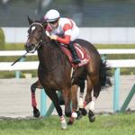 [オークス2019]予想オッズ・出走予定馬とデータ予想!複勝率100% データを紹介!買うのは9番人気まで、枠も内と外に注目