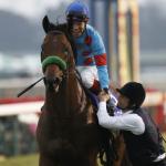 [目黒記念2019]予想オッズ・出走予定馬とデータ予想!ブラストワンピースは着外?